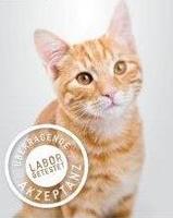 taurin wirkung bei katzen